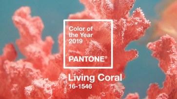 1 no blog da ana living coral